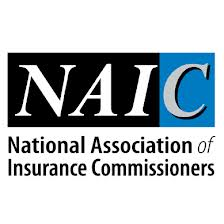 NAIC Report